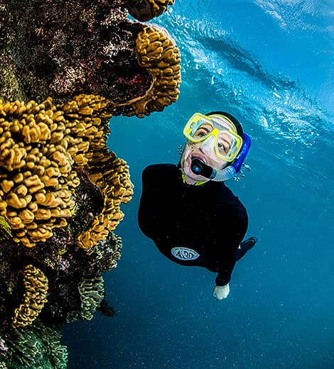 Port Douglas Best Snorkel Sites