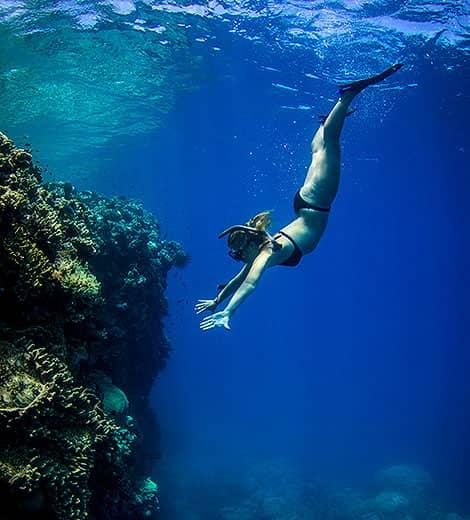 Port Douglas Private Reef Tours